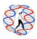DNA Wheel